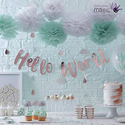 Ginger Ray Hello World Baby Shower Gender Reveal Party Partyware Tableware Lot