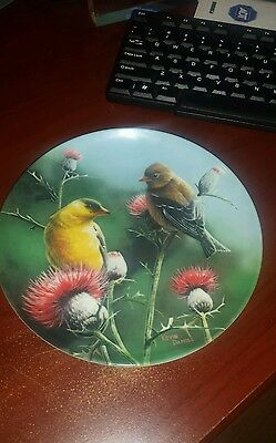 1987 Knowles The Goldfinch by Kevin Daniel Birds of Your Garden 8th 8 1/2 in