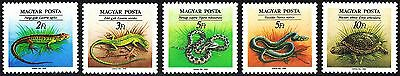 Hungary 1989 Nature Conservation Reptiles Snakes Complete Set of Stamps MNH