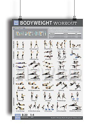 DUMBBELL WORKOUT EXERCISE Poster Laminated Personal Trainer Gym/Home