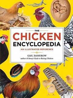 The Chicken Encyclopedia - NEW - 9781603425612 by Damerow, Gail