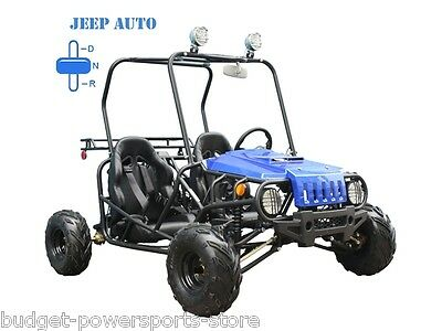 NEW Youth Go Kart 125cc Mini Jeep Kid Buggy AUTO w/ Reverse FREE SHIPPING SALE !