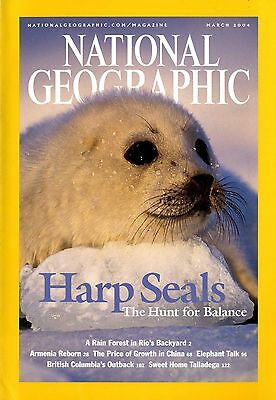 NATIONAL GEOGRAPHIC - 2004 March - Harp Seals