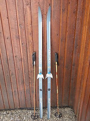 """Ready to Use Cross Country 65"""" CONCORDE 170 cm Skis +  Poles"""