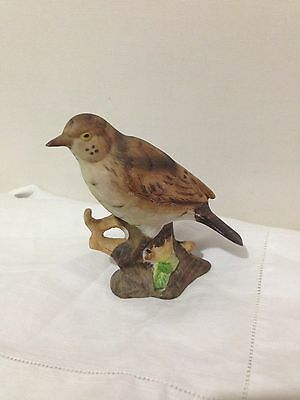collectable porcelain Mistle Thrush  bird figure ornament