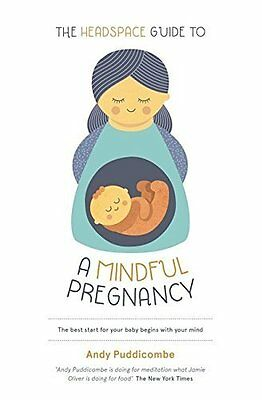 Headspace Guide to...a Mindful Pregnancy by Andy Puddicombe New Paperback Book