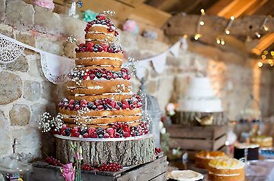 Wedding Cake Stand Rustic Centrepiece Tree Round Log Slice Oak Large 15x4 Inches