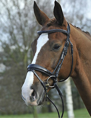 GFS Rolled Patent Snaffle Bridle - Black, full