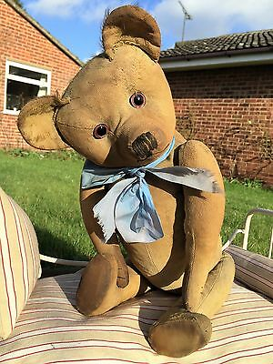 Baldrick Humpfry-Gorgeous 1900s Baldy Old TERRY/ FARNELL Teddy Bear Hump Antique