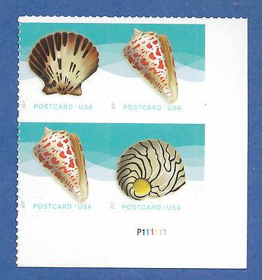 US SC#5163-5166 Seashells (Postcard Rate $0.34) a Plate Block of 4 Stamps ~ 2017