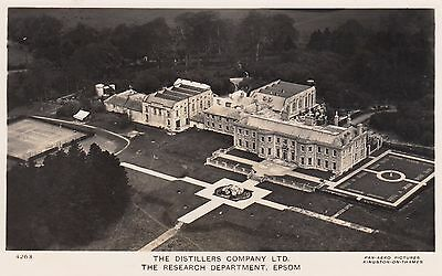The Distillers Company Ltd, Epsom, Surrey, Real photo, old postcard, unposted