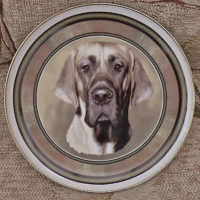 Bnwob Beautiful Fawn Great Dane Dog China Plate / Decorative / Ornament