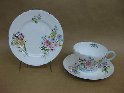 """Vintage Shelley """"Wild Flowers"""" Trio ~ Cup, Saucer & Plate ~Fine Bone China~13668"""