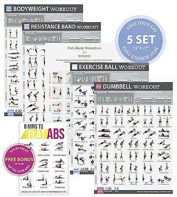 4-PACK LAMINATED HOME Gym Exercise Posters (Dumbbell, Suspension