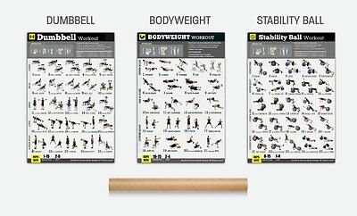 EXERCISE POSTERS SET of 3 Workout Chart LAMINATED Strength Training 18