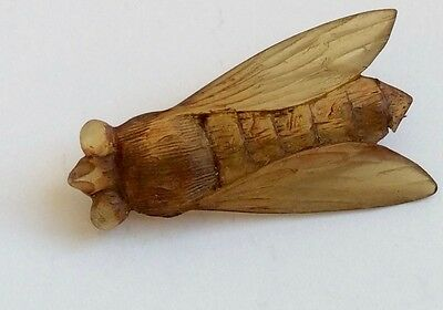 Art Nouveau Carved Horn? Cicada Insect Brooch *signed*