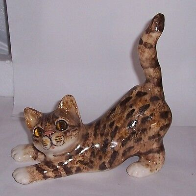 Winstanley Cat Kitten Size 2 Tabby Stretching looking to side