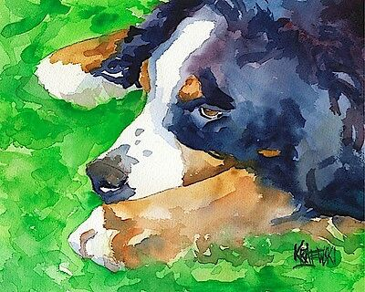Bernese Mountain Dog 11x14 signed art PRINT painting
