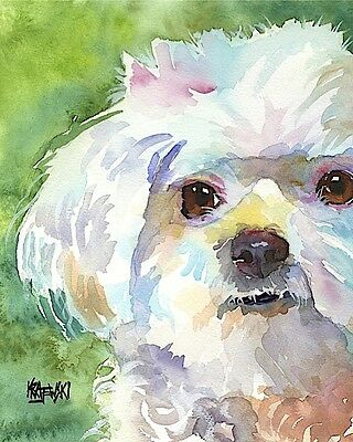 Maltese Dog 11x14 signed art PRINT RJK from painting