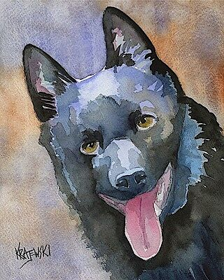 Schipperke Dog 11x14 signed art PRINT RJK painting