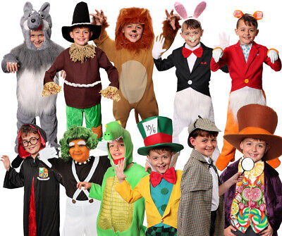 Boys World Book Day Fancy Dress Costume Childs School Book Week Choose Character