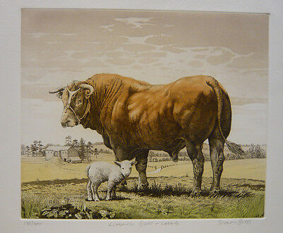 Colour Etching  -    Limousin Bull & Lamb  By Simon Bull