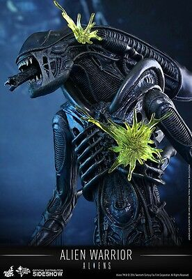 Hot Toys Alien Warrior 1/6 Figure Brand New