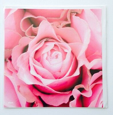 Lot Of 5 Pierre Belvedere Blank Greeting Cards Roses With Delicate Glitter Trim