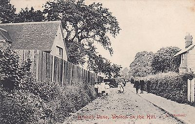 Breach Lane, Walton-on-the-Hill, Surrey, old postcard, posted 1907