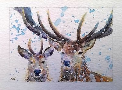 ORIGINAL ACEO watercolour animal/wildlife/farm/art painting STAG by Clare Crush