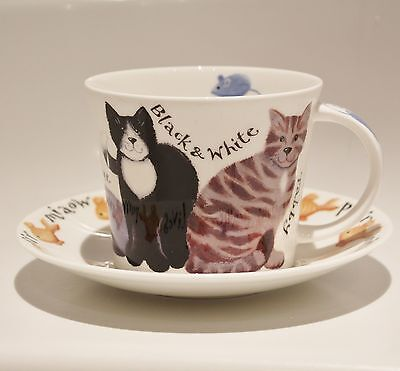 Roy Kirkham Whiskers Cat Lovers Bone China Large Breakfast Cup & Saucer Gift Box