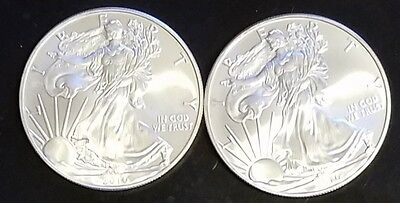 Lot Of (2)  2010 American Silver Eagle $1 Dollar Coin No Reserve