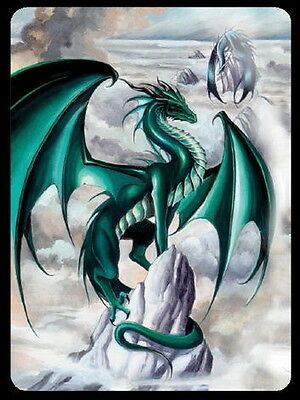 WINDOW STICKER - DRAGON TEMPEST - DECAL 120 x 90mm Wicca Witch Pagan