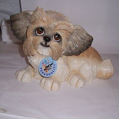 PETS WITH PERSONALITY - Her name is Flo the shih Tzu