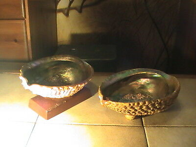 Two Beautiful And Collectable Large Abalone Shells On Plinth And Feet