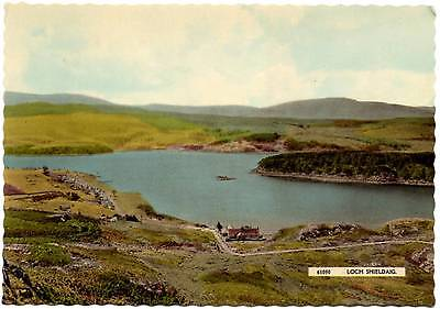 Loch Shieldaig - Scotland - Harvey Barton Postcard