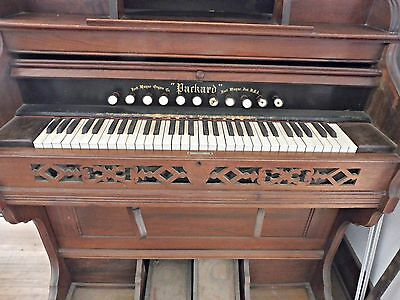Antique Packard/fort Wayne Pump Organ