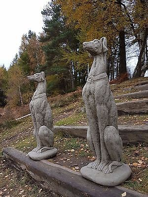 Pair of Life Size Greyhounds Garden Ornament Statue Sculpture Stone Hand Cast