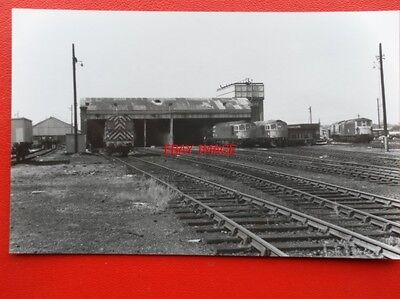 Photo  Sr Hither Green Loco Shed 14/5/76 Loco 73113 33037 33050