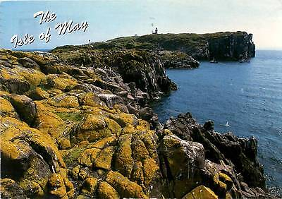 Bird Sanctuary in Firth of Forth - Isle of May - Scotland - Postcard
