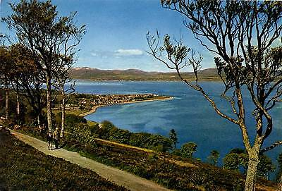 Cromarty and the Cromarty Firth - Ross-shire - Scotland - Postcard 1967
