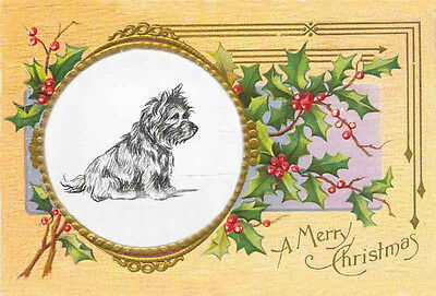 Cairn Terrier Dog Cute Sketch by Lucy Dawson ~ LARGE New Christmas Note Cards