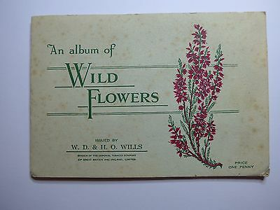 An Album of Wild Flowers 1st Series - WD HO Wills 50 Cigarette Card Collectables