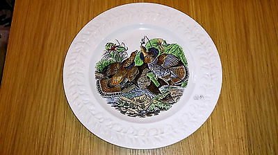 """Rare Vintage Adams The Birds Of America Ruffed Grouse 10.5"""" Collectors Plate"""