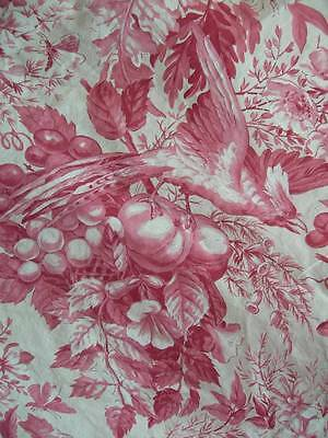 Delightful panel vintage French pink toile fabric - birds fruit (A)