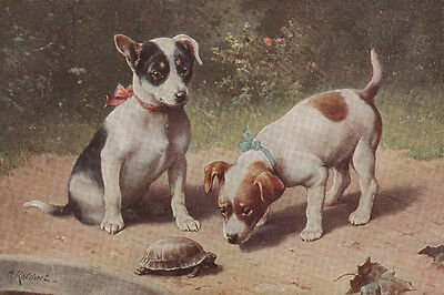 Jack Russell Terrier Puppies ca. Turtle  C. REICHERT LARGE New Blank Note Cards