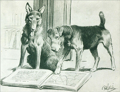 Airedale Terrier & German Shepherd War Dogs 1920 ~ New  Large Note Cards