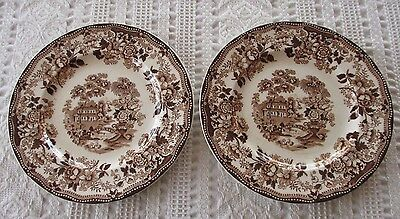 "2-Royal Staffordshire Brown ""Tonquin"" Clarice Cliff, 8"" Salad Plates-England"