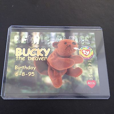 Rare TY Beanie babies Trading card Gold Bucky 144/150 Series 1