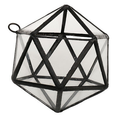 Hanging Glass Geometric Terrarium Box Tabletop Succulent Plant Planter